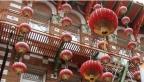 Chinese New Year Flower Fair