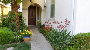 The front entryway flanked by color and life.